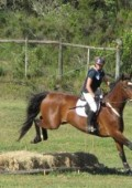 Plett Equestrian Centre to host training show