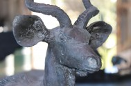 bronze-fields-sculptor-robbie-leggat-IMG_5591