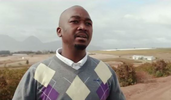 A screen capture from the video documentary Creating the Blend on the wine industry in South Africa