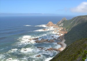 The Kranshoek area outside Plettenberg Bay should soon boast a zipline as a tourist attraction.