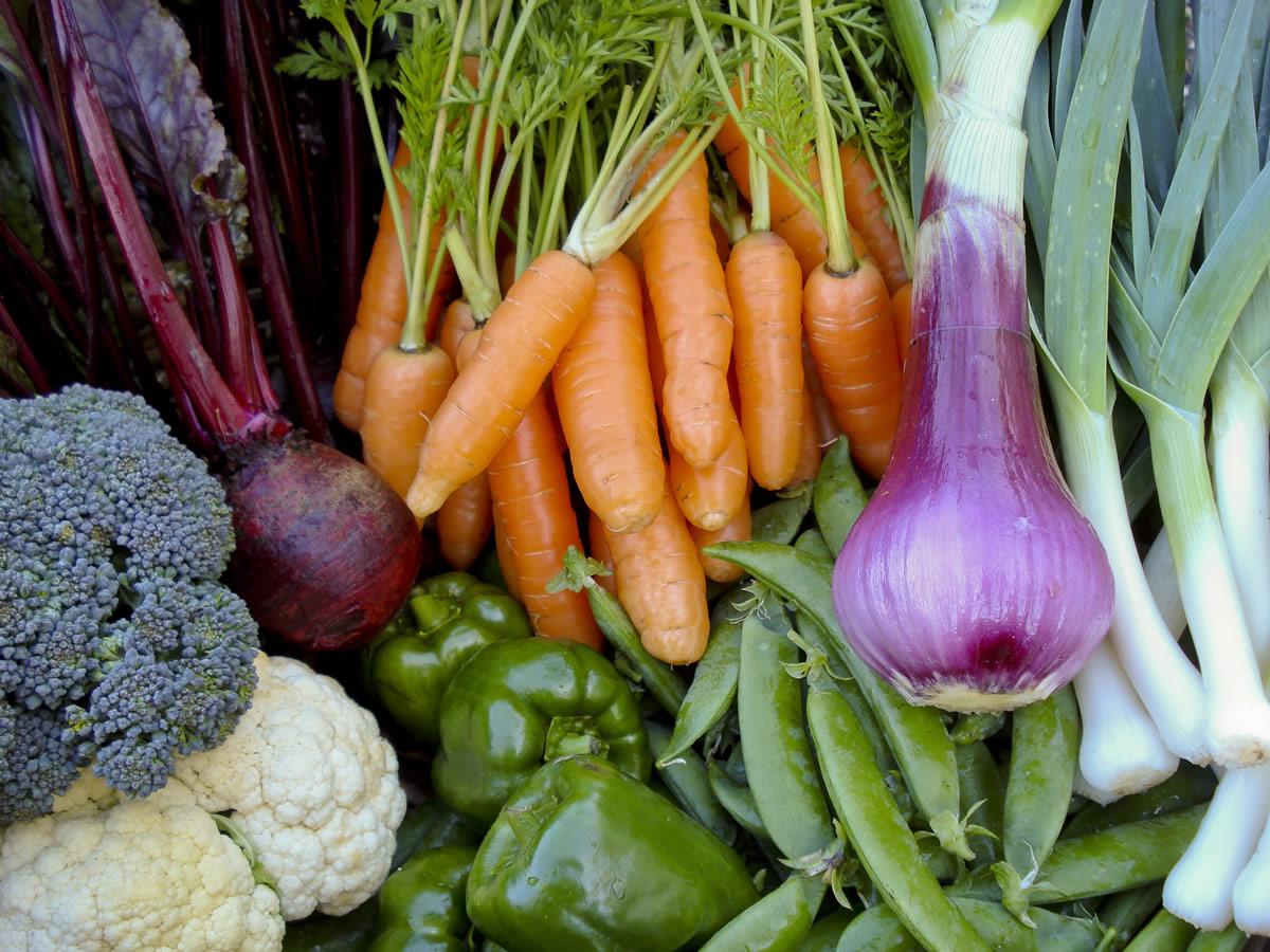 Farm Fresh Produce in Plett « Farm Fresh Produce in