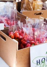 Farm Fresh Produce in Plett