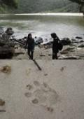 Keurbooms Coastal 'Explorer' Eco-Hiking Adventures