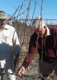 Historic day for Plett Wine Route as Jan Boland pays a visit