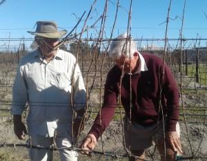 Jan Boland visits Plett Winelands
