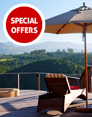 Special Offers on Accommodation in Plett