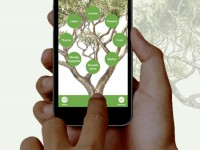 Launch of The Tree App