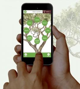the-tree-app