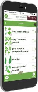 thetreeapp-mobile-phone
