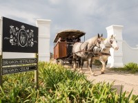 Horse Drawn Carriage Wine Tasting Trail