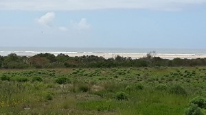 Sea views from some of the camp sites