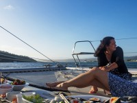 Ocean Sailing Charters November Special