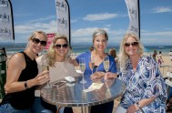 Plett Wine and Bubbly Festival 2017 _1018