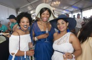 Plett Wine and Bubbly Festival 2017 _1026