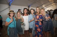Plett Wine and Bubbly Festival 2017 _1120