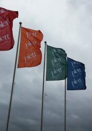 Plett Summer flags like a rainbow