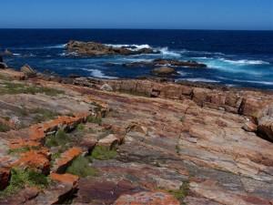 Plett is a top snorkeling spot in SA