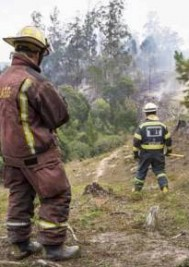Municipalities in S Cape to boost tourism after fires