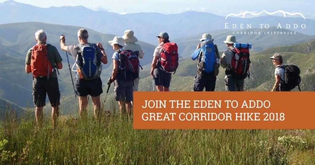 Eden to Addo Great Corridor Hike
