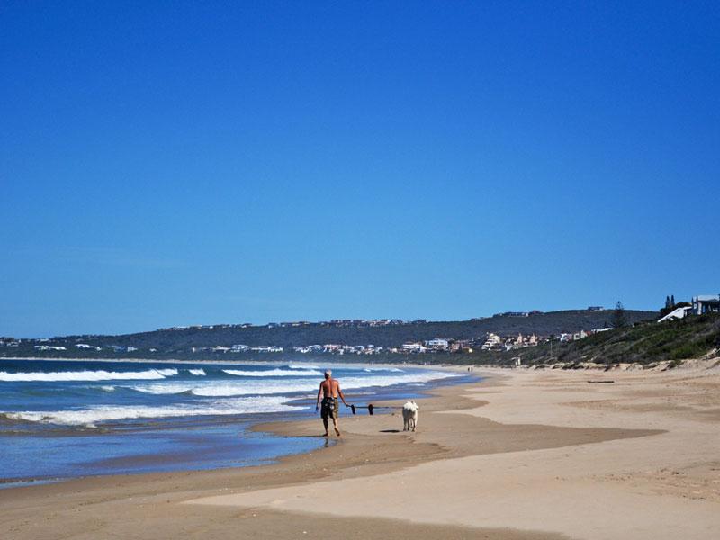 Plett on SA Venues' list of best small beach towns