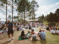 Truck & Vine Festival