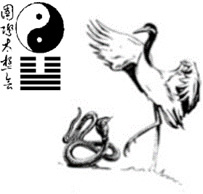 World Tai Chi & Oigong Day