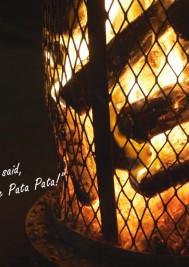 VIDEO: Plett ARTS Festival 2018 promo
