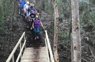 The bridge on the Harkerville parkrun, which Plett Tourism contributed towards
