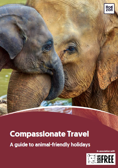 "Download the guide ""Compassionate Travel - A guide to animal-friendly holidays"""