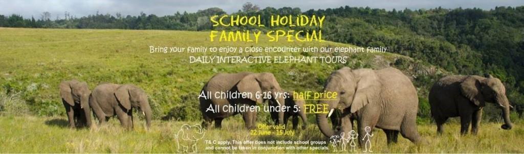 knysna elephant park winter special 1