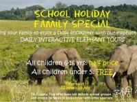 Knysna Elephant Park Winter Specials