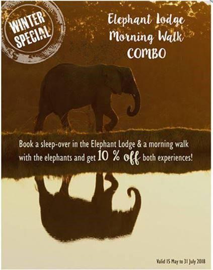 knysna elephant park winter special 3