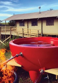 Top picks for Plett camping adventures