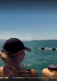 Video: Women of the Waves