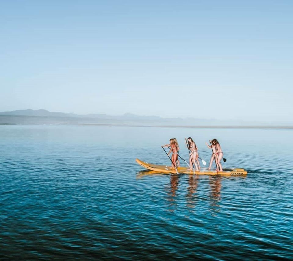 Plett water sports : Photo - Learn to Surf Plett