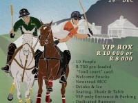 Plett Polo International