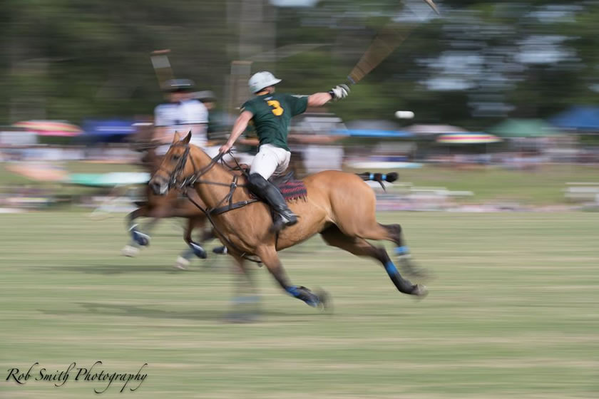 Polo International in Plett
