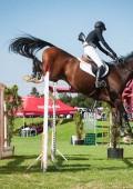SA Show Jumping Championships