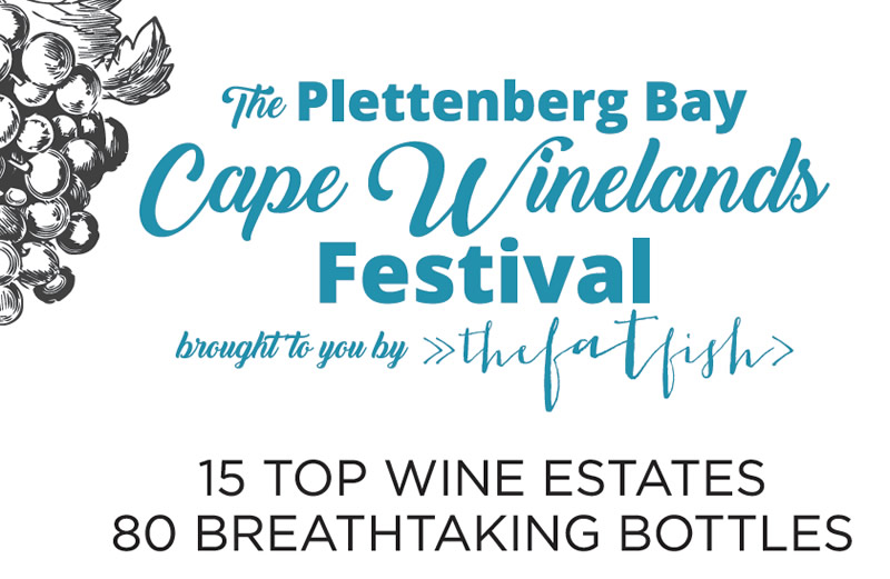 cape winelands festival