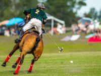 Plett Polo Festival & International