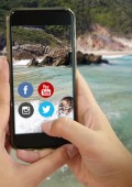 Plett Tourism's online community passes 22k
