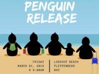 8th Penguin Release in Plett