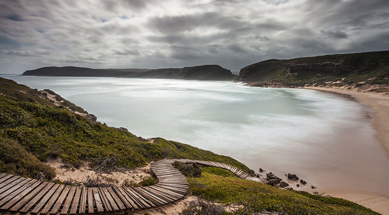CountryLife-list-of-CapeNature-reserves-includes-Robberg-Nature-Reserve