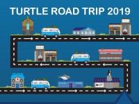 Turtle Road Trip 2019