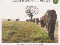 Knysna Elephant Park Winter Special