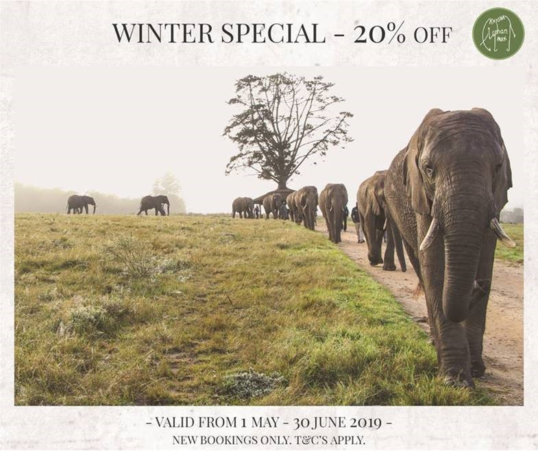 knysna elephant park winter special 2019