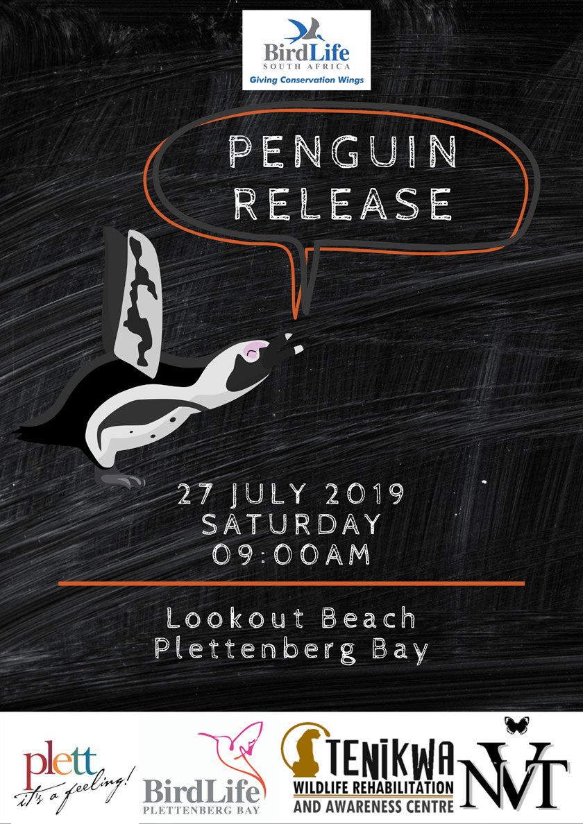Penguin Release July 2019
