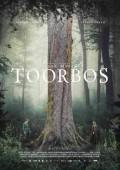 Dalene Matthee movie filmed in forests around Plett