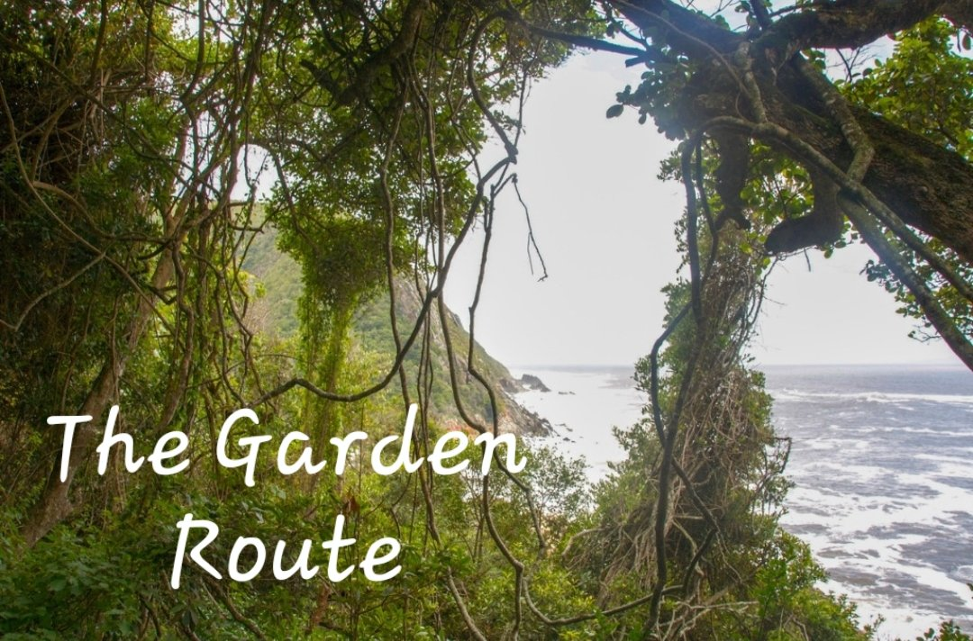 Harkerville, between Knysna and Plettenberg Bay, where you'll find fabulous forest trails to drive on, while a number of beaches are just a short drive away.