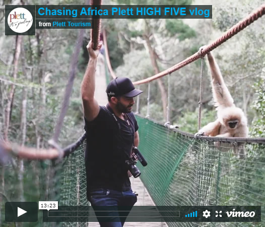 Chasing Africa vlogs Plett HIGH FIVE